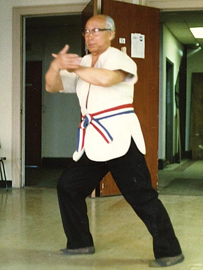 great grandmaster does tai chi